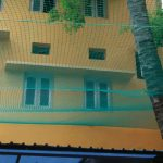 .Coconut tree Safety Nets in Bangalore