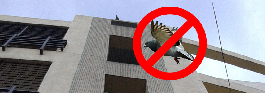 Anti Birds Net in Bangalore